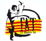 Federación Aragonesa de Taekwondo