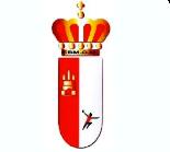 Federación de Balonmano de Castilla la Mancha