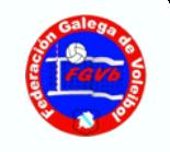 Federación Galega de Voleibol
